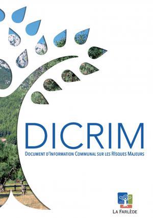 image-dicrim